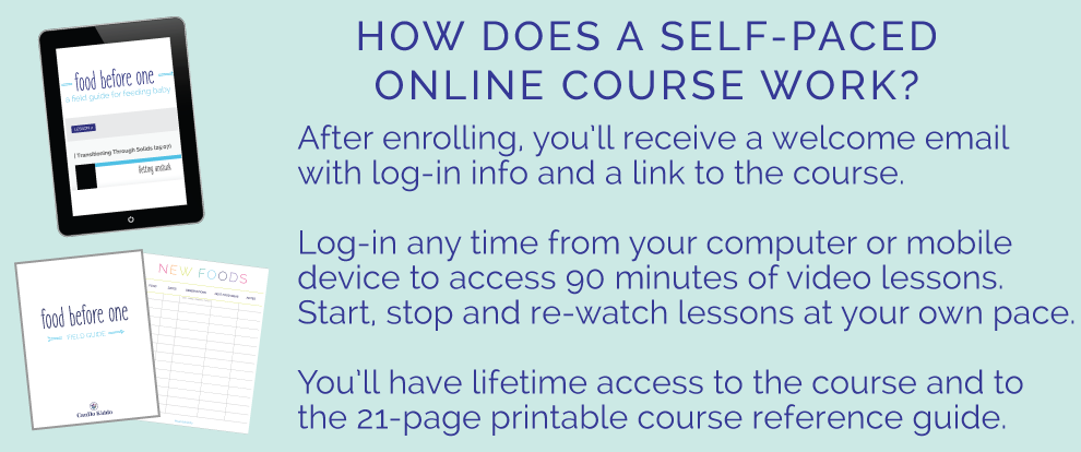 Screenshot how does online course work