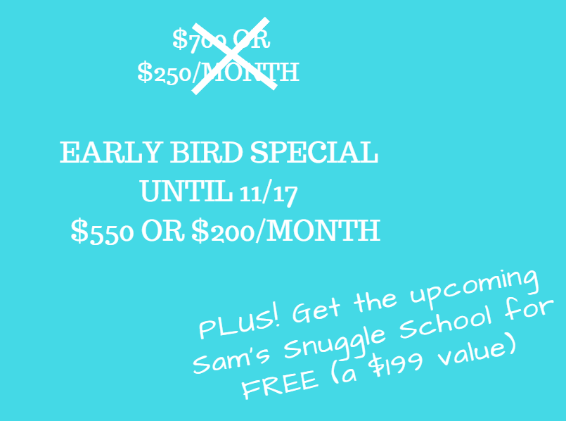 Screenshot early bird special for cuddle with whole self